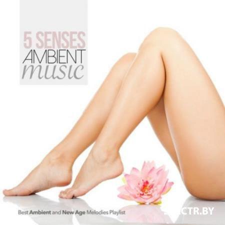 VA - 5 Senses Ambient Music Best Ambient and New Age Melodies Playlist (2015)